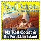 blue_dolphin_charter_120